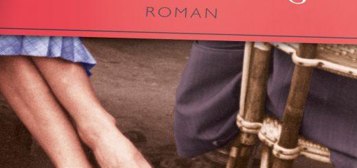 Wallpaper Hockeystick Banner 'Madame Hemmingway' von Paula McLain (Aufbau Verlag)