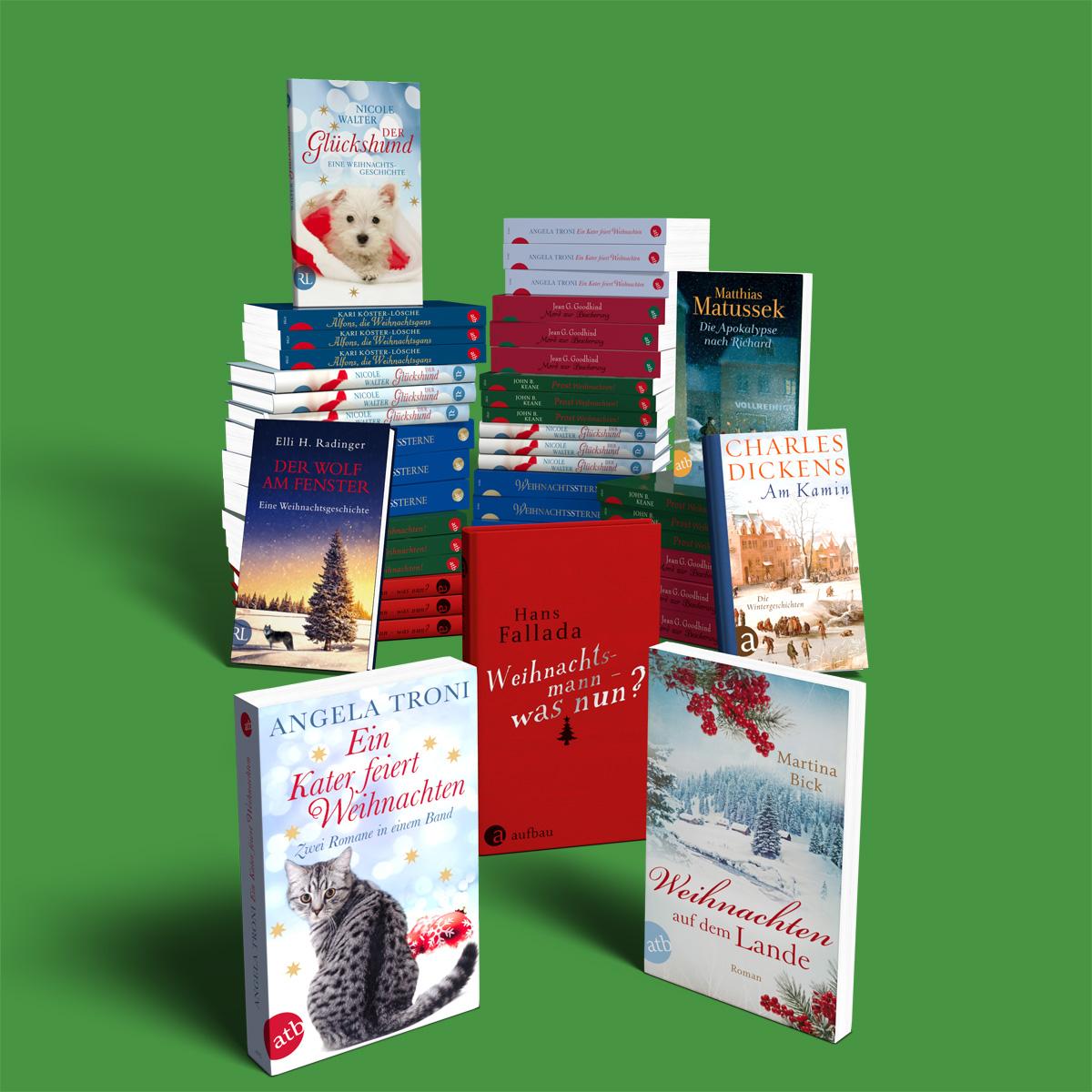 3D Bücher Arrangement (Aufbau Verlag)