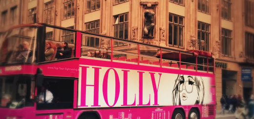 Anna Friedrich 'Holly' (Goldmann Verlag)